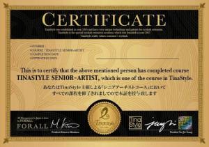 日本、韓国、米国の特許技術 TINA STYLE シニアアーティストディプロマ
